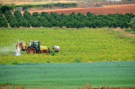 fumigation: Tractor fumigating a planted field