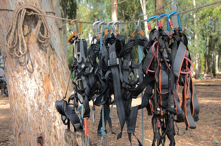 abseiling: Climbing harnesses handing from a rope - used for a rope course
