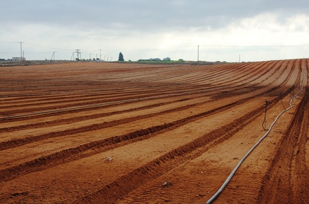 Freshly tilled farm field ready for planting photo
