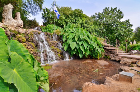 A wide-angle view of an oasis of waterfall, pond, and Elephant Ear plants in a kibbutz in Northern Israel with the Israel flag in the background.  Water is pumped from the nearby Jordan River.