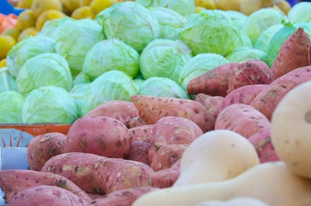 Fresh colorful produce in a Tel Aviv fruit and vegetable market: squash, yams, cabbage, and more