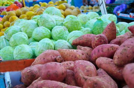 yam israel: Fresh colorful produce in a Tel Aviv fruit and vegetable market: yams, cabbage, and more