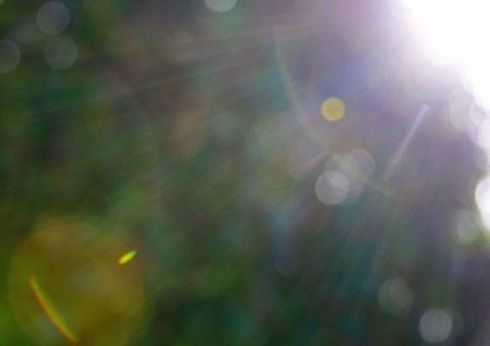 Abstract circles from the sun and lens flare - background in green colors photo