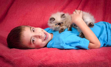 8 year old: A young, two month old Blue Point Himalayan Persian kitten playing with an 8 year old cute boy on a red comforter