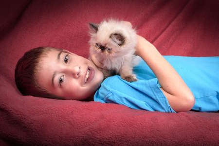 8 year old: A young, two month old Blue Point Himalayan Persian kitten playing with an 8 year old boy on a red comforter