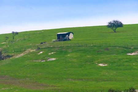 A lone shack on a  gently rolling hill of the Carmel and Lower Galilee regions between Zihron Yaakov, Nazareth, and Safed in Israel