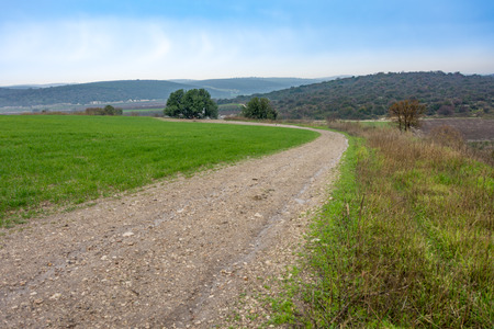 holyland: Nature path and the beautiful green valleys, gently rolling hills, and mountains of the Carmel and Lower Galilee regions between Zihron Yaakov, Nazareth, and Safed in Israel