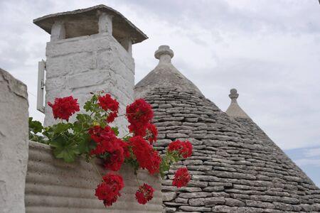trulli: flowers on a trulli