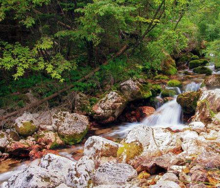 Scenes of Slovenia photo