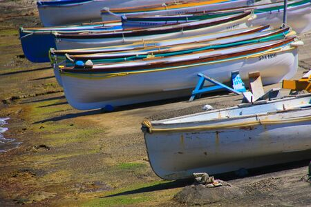 capri: Boats of Capri