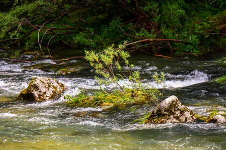 Vintgar Gorge, Slovenia (with Bled)