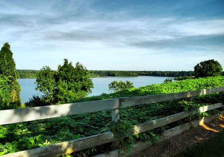 Alabama Fenceline photo