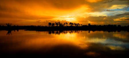 preserve: Pine Glades Natural Area in Florida