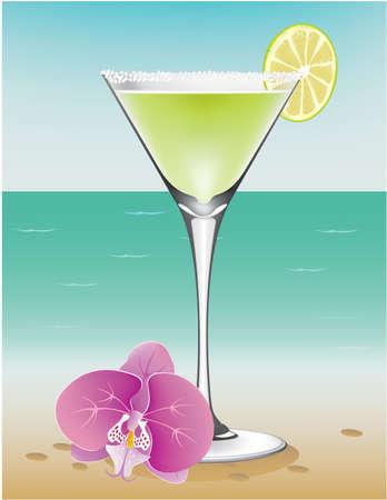 Margarita beach vector