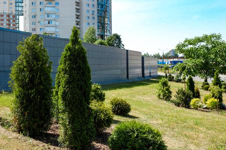 Landscape design. Bushes, rocks dwarf spruce fern. On the background of granite stairs. Far high-rise buildings.
