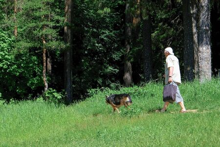An old elderly man walking in the Park with a dog. The old dog breed avcharka Reklamní fotografie