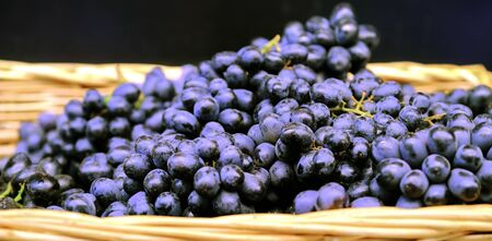 Branches of grapes in a wicker basket. Bundles of fresh ripe red grapes in the grocery store, selective focus. Grape background Reklamní fotografie