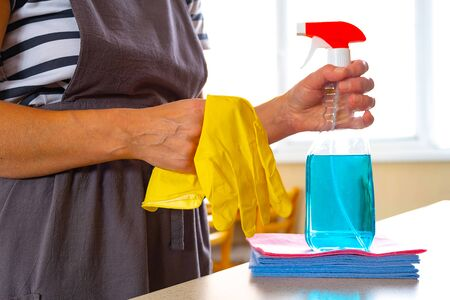 Wipes and cleaning products in the hands of women. Hostess on the background of the living room
