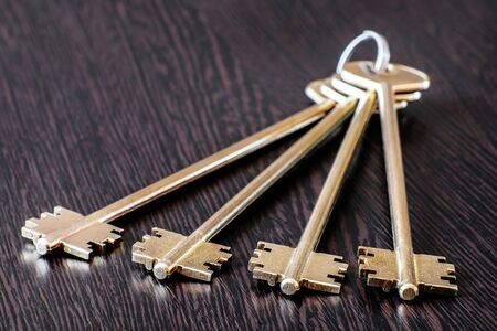 Standard set of house keys on a spring ring. Set of keys yellow-brass color