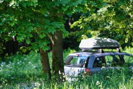 Summer background with bright green maple leaves. In the background, a car with a trunk. Selective focus. Bluer