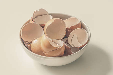 The broken shell of a dozen eggs lies in a plate. Eggshells are a source of calcium
