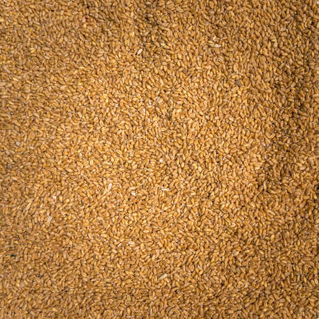 unrefined: Unrefined brown rice for healthy close-up Stock Photo