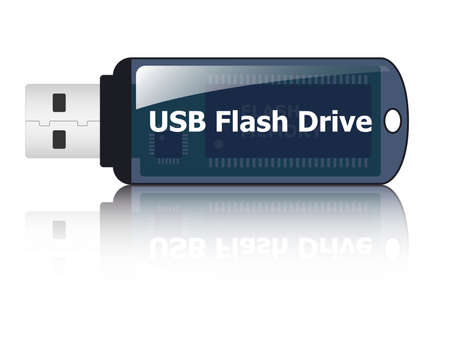 flash drive: USB flash drive icon, vector Illustration