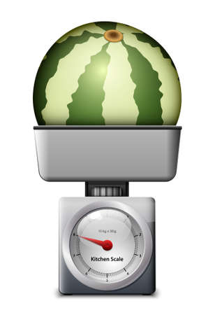 kitchen scale: Kitchen Scale with Watermelon. Vector illustration