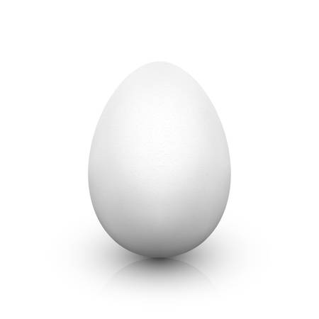 White egg with soft shadow and reflection on white background. Single realistic animal egg. Template for Easter holiday. Realistic vector illustration Illustration
