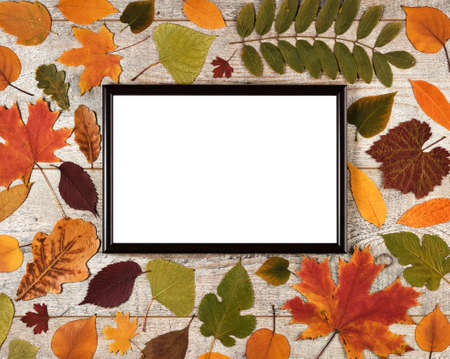 Autumn composition with leaves on a wooden background and photo frame with white empty space for text