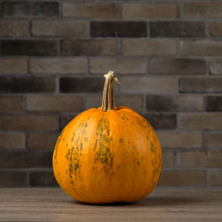 Ripe pumpkin close-up on a wooden table on a background of defocused brick wall. Concept autumn or Halloween background