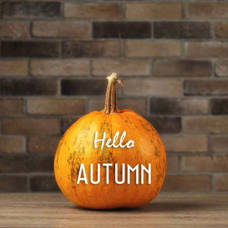 Autumn background with ripe pumpkin close-up and Happy Halloween lettering. Concept autumn or Halloween background Imagens