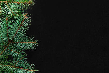 Christmas tree branches on the left side on a black board background. Copy space, flat lay, view form above