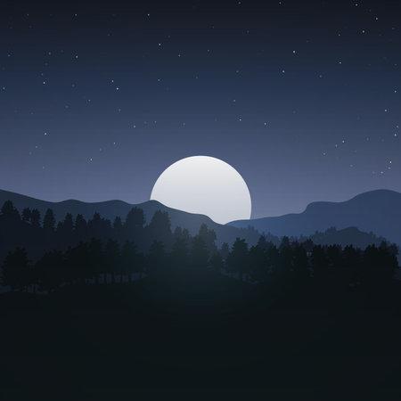 Night forest moon. Vecton illustration.