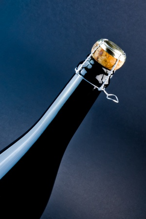 detail of champagne bottle with cork Stock Photo - 11781996