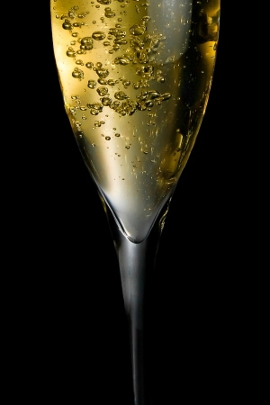 champagne flute with golden fine bubbles on black background photo
