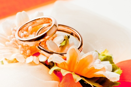 gold wedding rings on the flowers photo