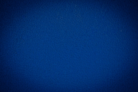 blue skin texture for background photo