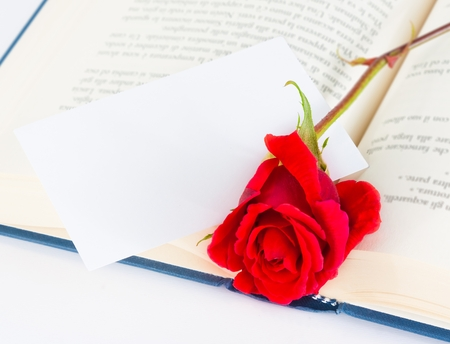 red rose on open book with blank gift card for text on white background photo
