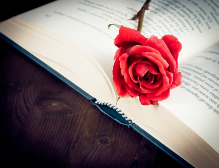 detail of red rose on the open book on old wood background with space for text, old style photo