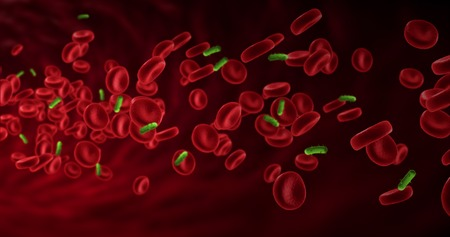 diseased: red blood cells in an artery near virus and bacteria, flow inside body, medical human health-care