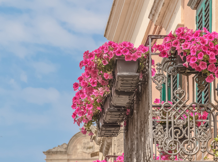 red and pink rose flowers on the balcony of a old vintage house in the Matera under blue sky, concept of spring is coming Standard-Bild - 100868580