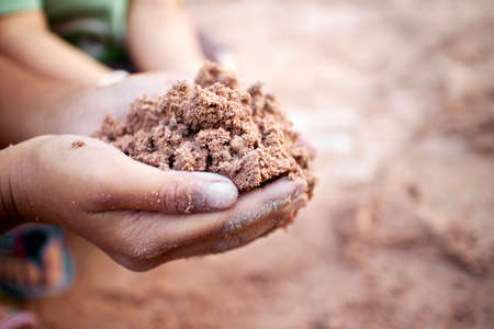 Tree planting, soil in your hand. Stock Photo