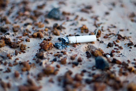 Cigarette butts on the ground photo