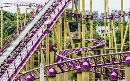 roller coaster in forest part of view