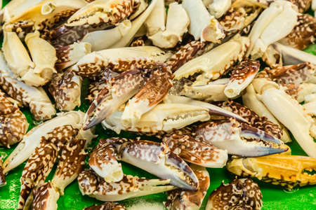 fresh crab Chelate on sale in seafood market