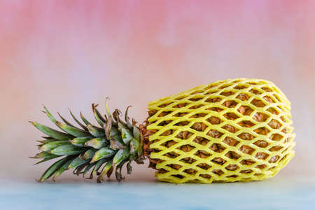 Pineapple on a bright background with copy space