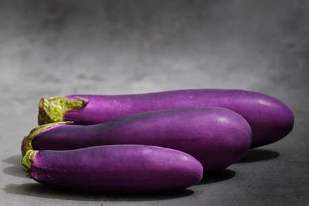 eggplant isolated on dark grey background with copy space Archivio Fotografico