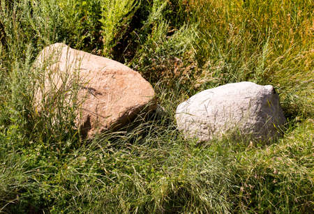 tranquillity: two large stones in a green grass are a confidence and tranquillity symbol