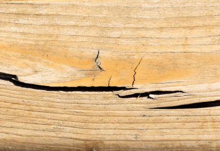 Cracked wood on white. Stock Photo